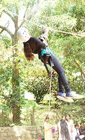 High Rope Team Building Courses